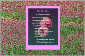Pink Clover Poem
